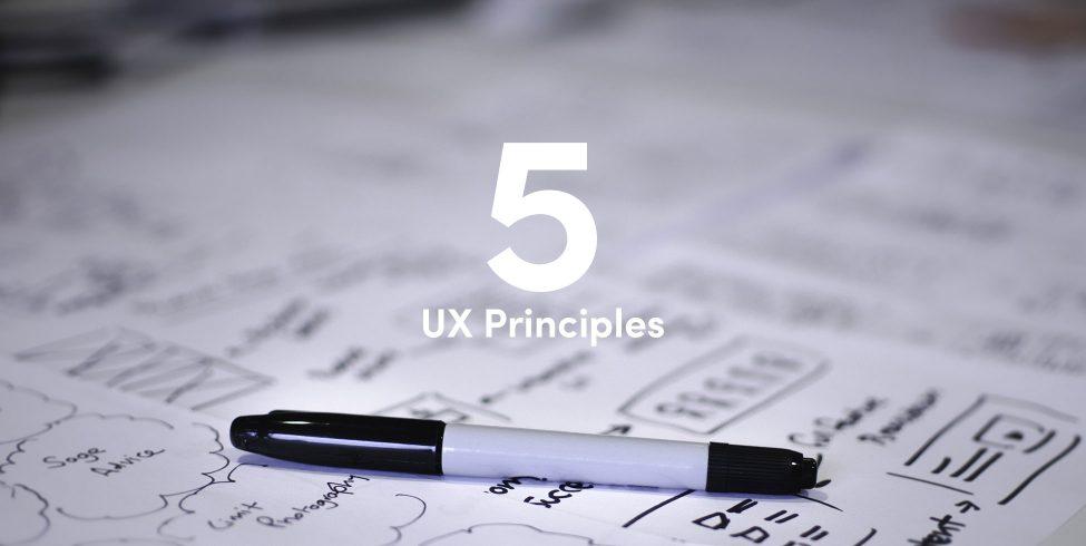 5 UX principles